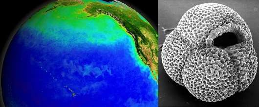 A switch in ocean circulation that helped end the Ice Age