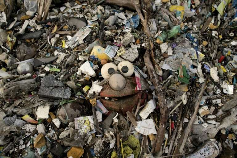 At current rates of dumping, there could be more plastic trash than fish in the world's oceans by 2050 if nothing is done