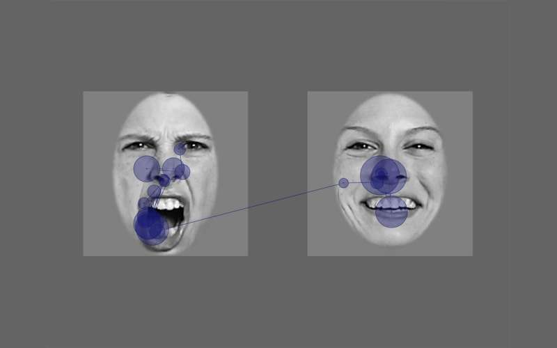 Babies make the link between vocal and facial emotion