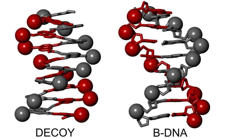 Biomimetic chemistry: DNA mimic outwits viral enzyme