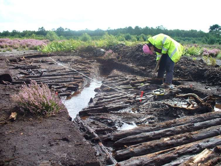 Bogs are unique records of history – here's why