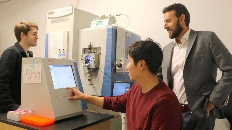 Cellular clean-up crews linked to how body handles sugar