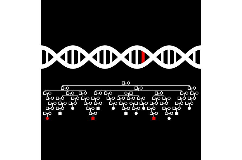 Changes in genes involved in DNA repair and packaging linked to risk of multiple myeloma