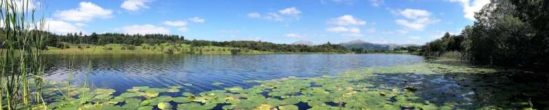 Combined nutrients and warming massively increase methane emissions from lakes
