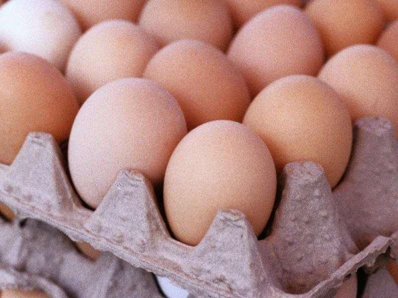 Company recalls more than 200 million eggs due to salmonella scare