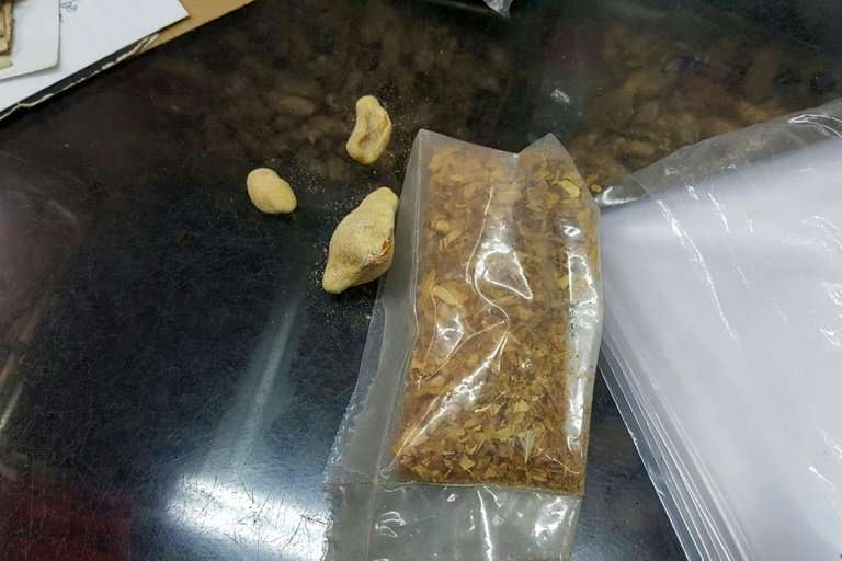 Deep fried pangolin scales next to a bag containing shredded pangolin scales at a traditional Chinese medicine store in Hong Kon