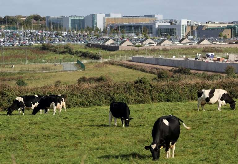 Despite the setback on the data centre, Apple has a major presence in Ireland where its European headquarters is based in the so
