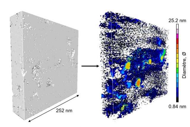 Detailed 3-D imaging of kerogen, a source of petroleum and natural gas