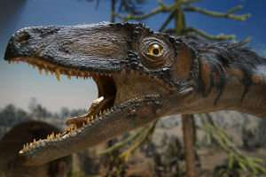 Dinosaurs were 'too successful for their own good'