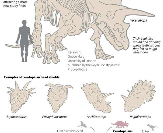 Dinosaurs with horny headgear.