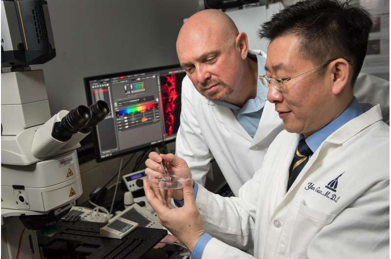 Direct electrical current used to preferentially inhibit pain-transmitting neurons