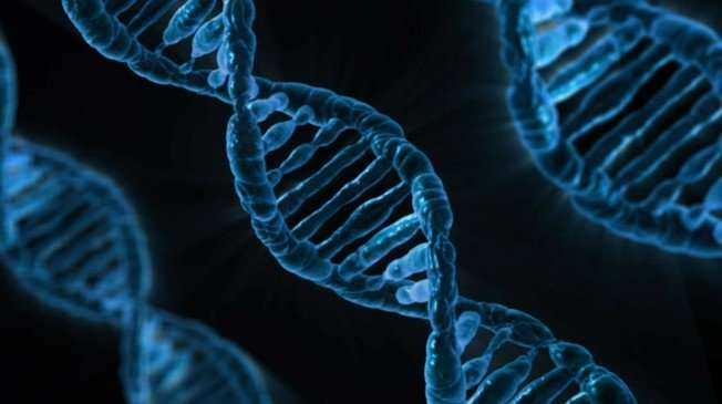 DNA fragments reveal the variety of species in rivers