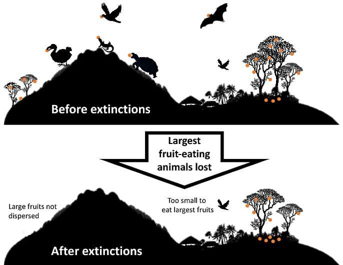 Does it really matter if one animal goes extinct?