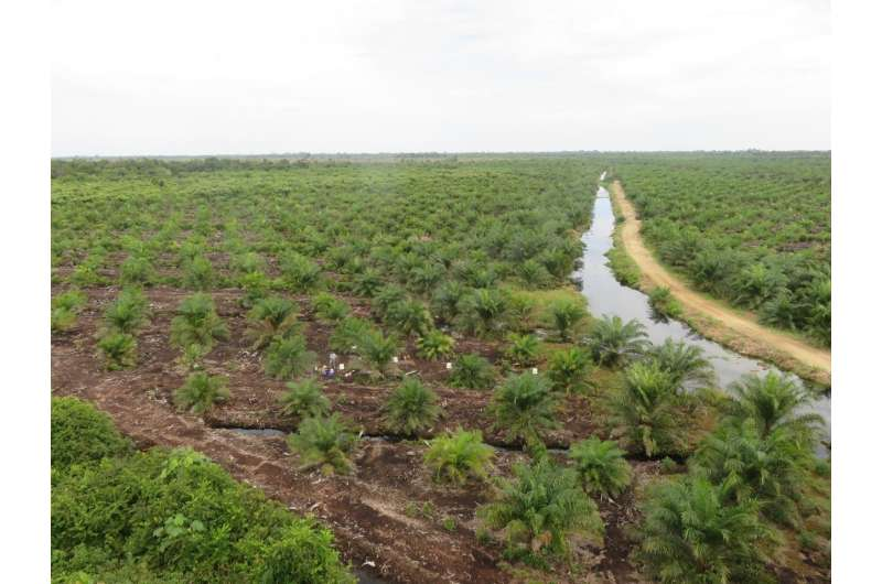 Draining peatlands gives global rise to greenhouse laughing-gas emissions