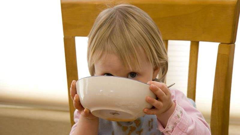 Eat up! Do dads push food on toddlers?