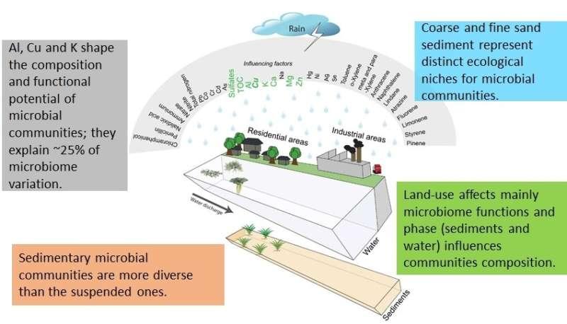 Ecological functioning of urban waterways