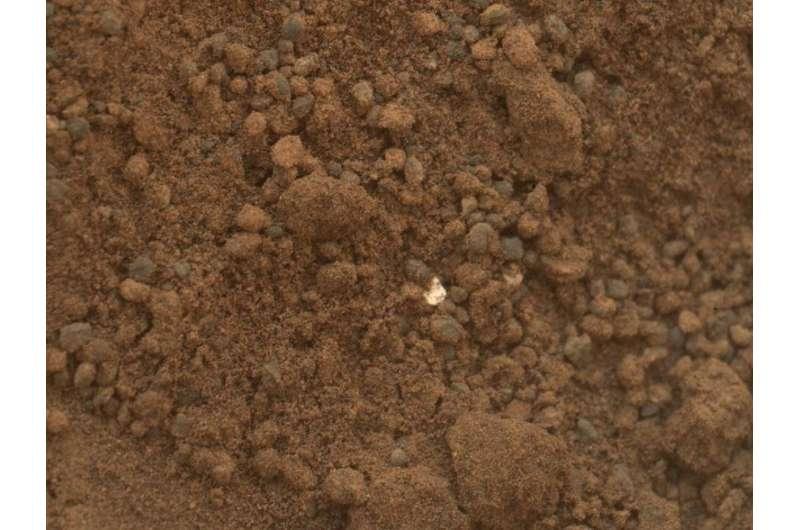 ESA AND NASA To investigate bringing Martian soil to Earth
