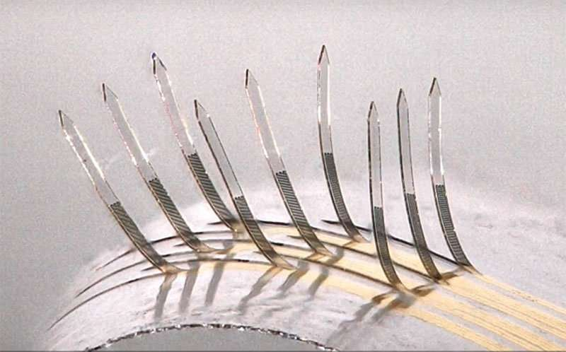 E-whiskers may be touchstone for future of e-skin
