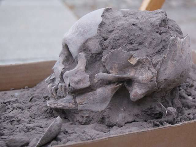 FEFU archaeologists have found the oldest burials in Ecuador