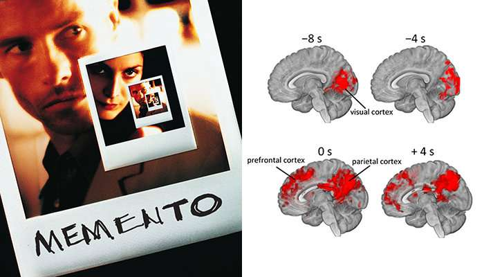 Film Memento helped uncover how the brain remembers and interprets events from clues