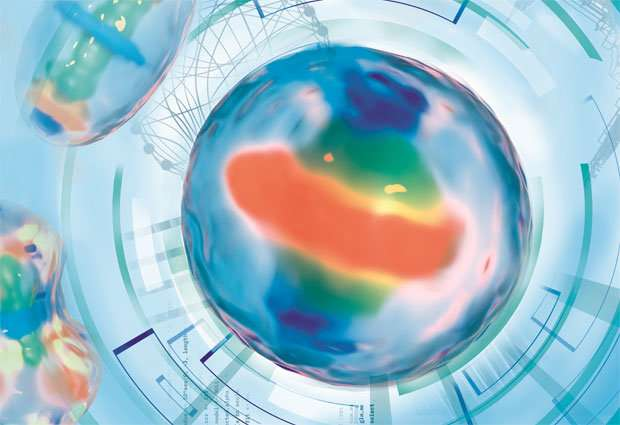 First interactive model of human cell division