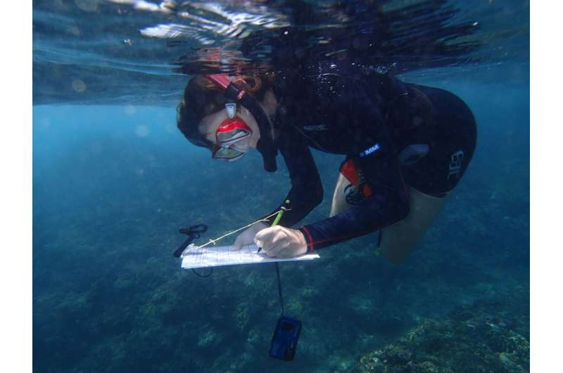 Fish give up the fight after coral bleaching