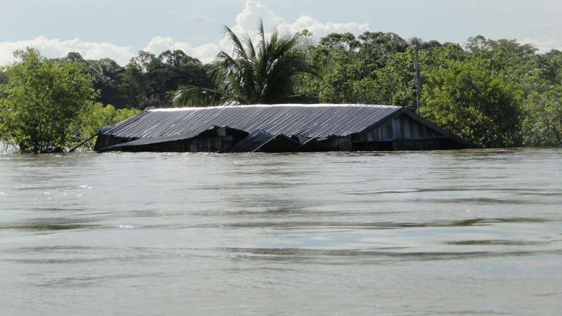 Flood frequency of the world's largest river has increased fivefold