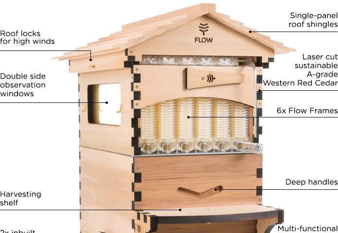 Flow Hive 2 sees sweet success in offering new features for honey on tap