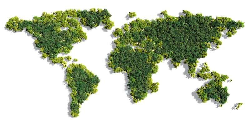 Forests are growing again where human well-being is increasing, finds new study