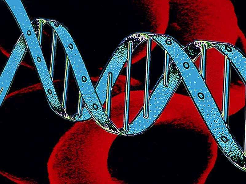 Genetics should inform care in noncompaction cardiomyopathy