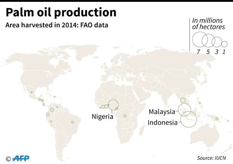 Global palm oil production in 2014, according to the UN Food and Agricultural Organization (FAO)