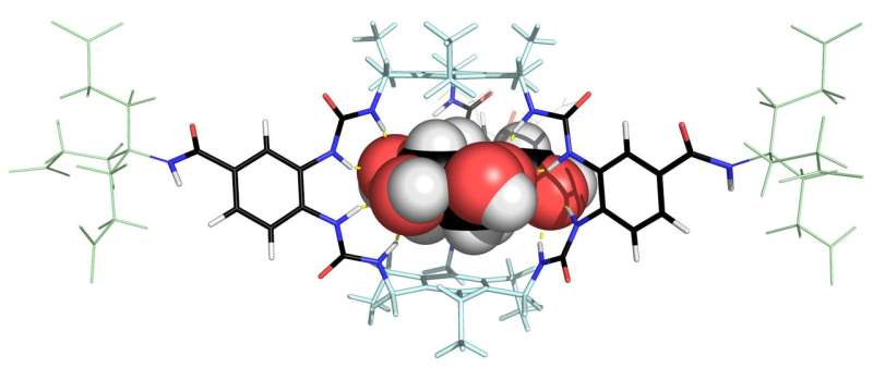 Glucose binding molecule could transform the treatment of diabetes