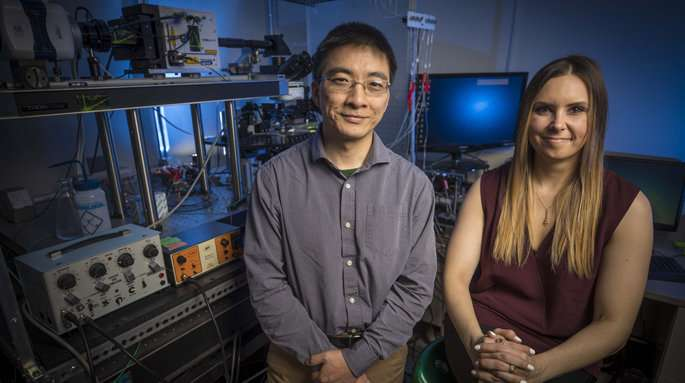 Graphene material strengthens nerve signaling in the brain