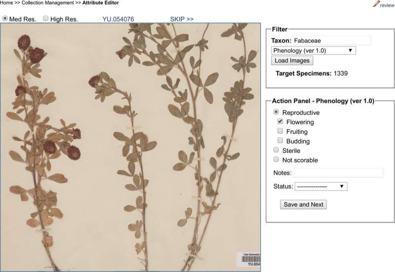 Green digitization: Botanical collections data answer real-world questions