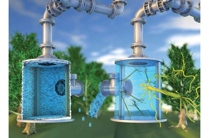 Hairy nanotechnology provides green anti-scaling solution