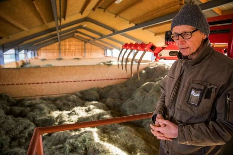 Heiner Luetke Schwienhorst has joined forces with two other German farmers and Greenpeace to challenge the government's failure