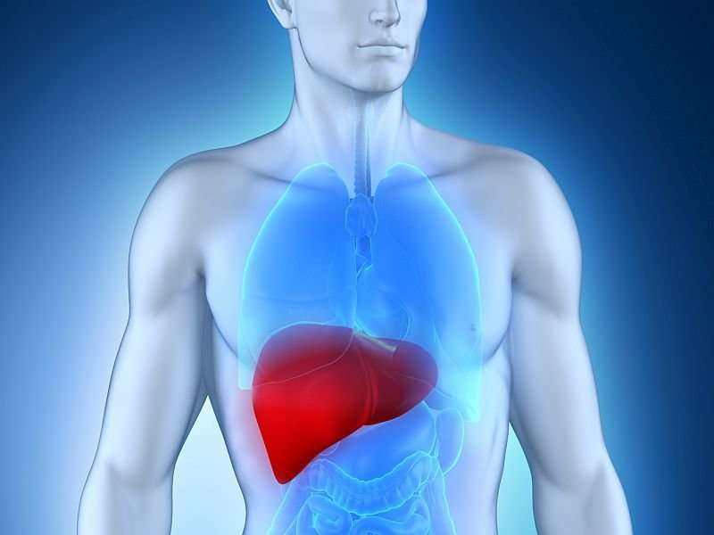 Hepatic fat accumulation may have causal role in liver disease