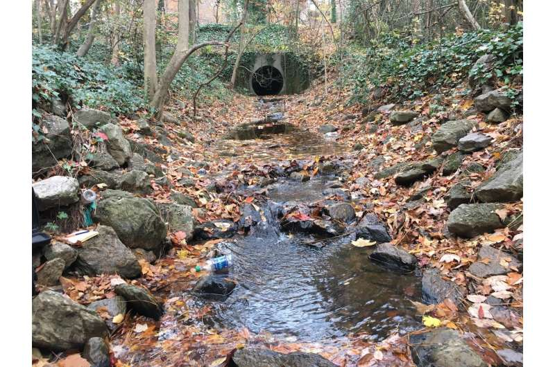 Hypoxic dead zones found in urban streams, not just at the coast