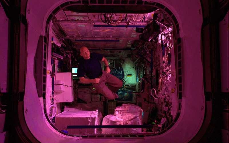 Image: ESA astronaut Alexander Gerst in the ISS European Columbus laboratory