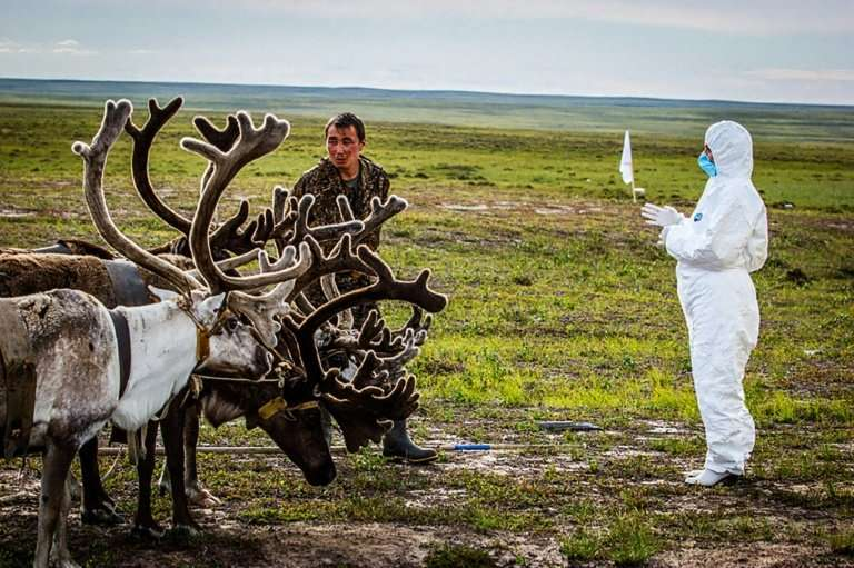 In 2016 a child died in Russia's far northern Siberia in an outbreak of anthrax that scientists said seemed to have come from th
