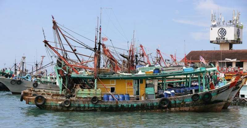 Industrial fisheries in Southeast Asia divert millions of tonnes of fish to fishmeal