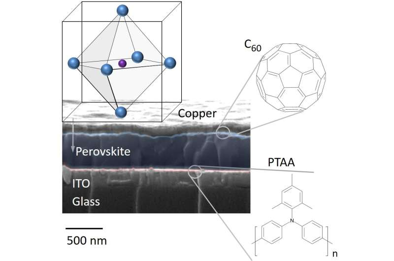 Insight into loss processes in perovskite solar cells enables efficiency improvements