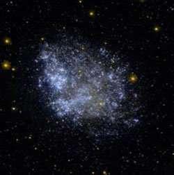 Is dark matter made of primordial black holes?