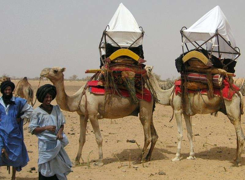 Is MERS-CoV a threat for Africa?