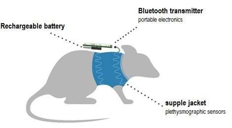 Jacket for cardiorespiratory monitoring of laboratory animals