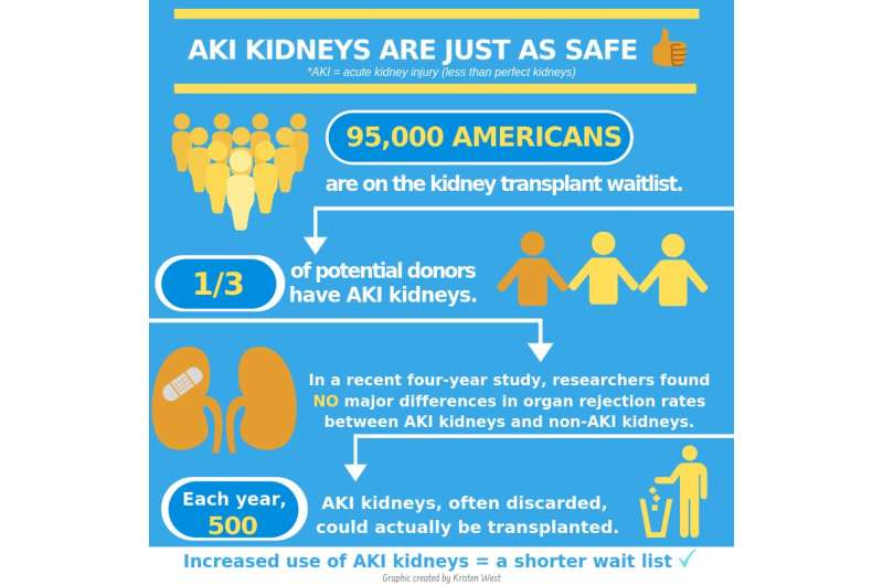 Kidneys from deceased donors with acute kidney injury suitable for transplant