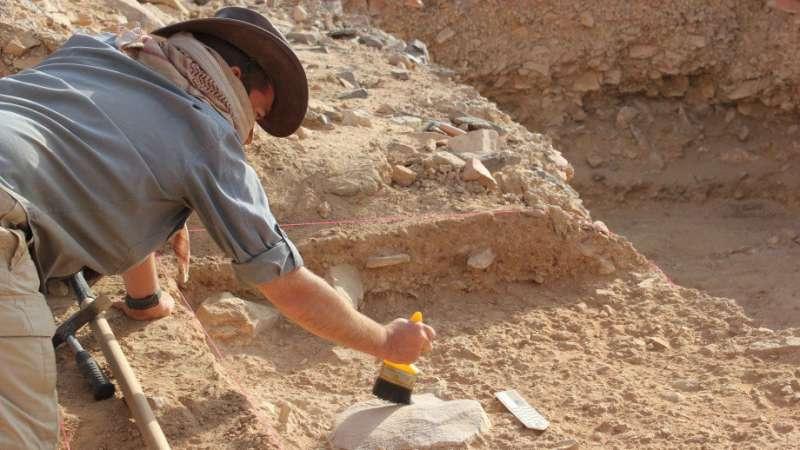 Laziness led to extinction of Homo erectus»