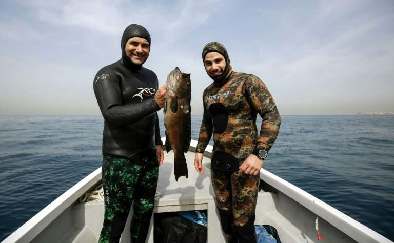 Lebanese freedivers like Rachid Zock (L) and Jamal Hilal dive vertically into the water clutching a spear gun to hunt for fish w