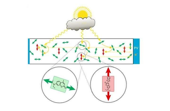 light harvesting funnels