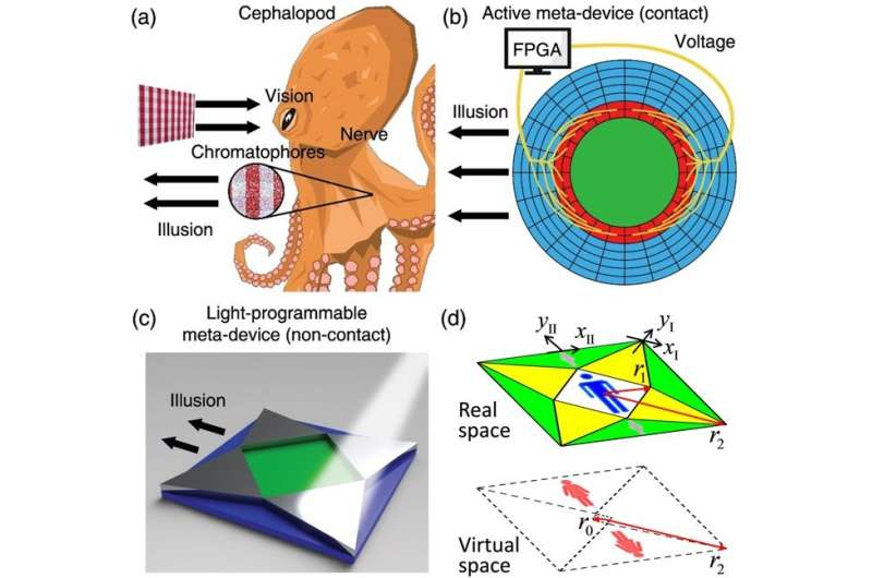 Light Programmable Guidance of Direct Current Fields in Laplacian Metadevices
